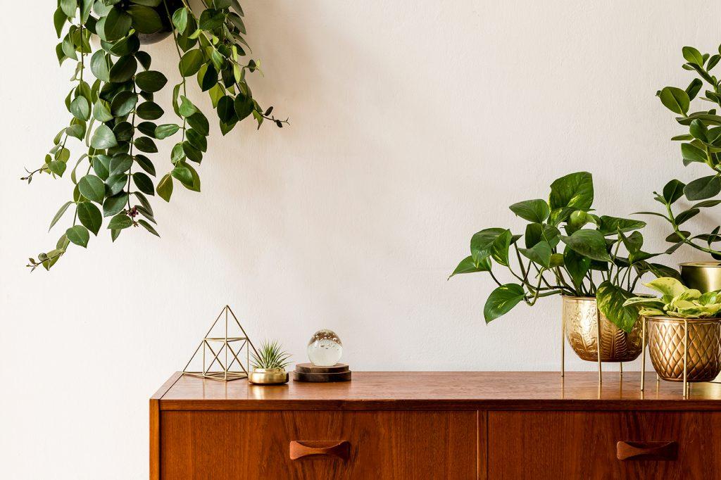 Botanisch Interieur - Botanische Woonstijl