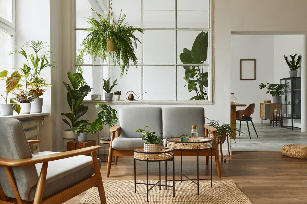 Botanisch interieur - Botanische Woonstijl - Botanische Woonkamer